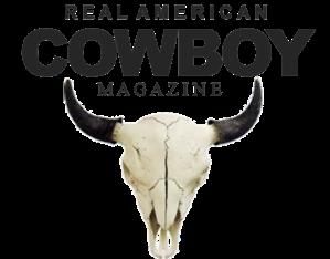 logo widget
